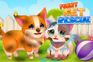 Pet Spiele